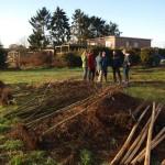 klein workshop: waarop letten bij het planten van bomen