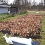 2.0 - de andere kant wordt voorbereid: compost, bladderen + folie erop