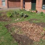 update maart: ook de voortuin is weer bewerkt - eerste aardappelen + tuinbonen, en peulen zijn geplant